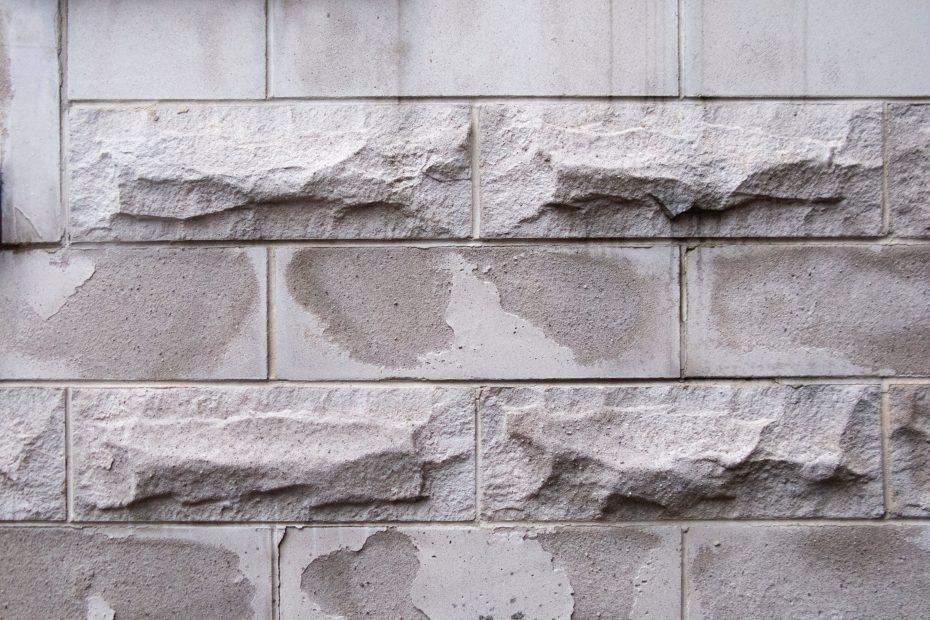 kapilarna vlaga prikaz poškodovanega zidu
